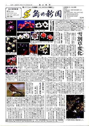 島の新聞032001