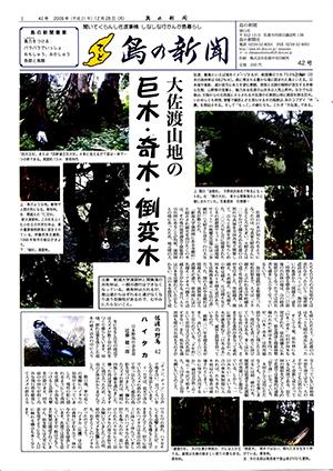 島の新聞042001